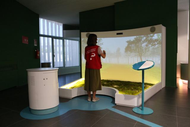 exhibition-corporea-1